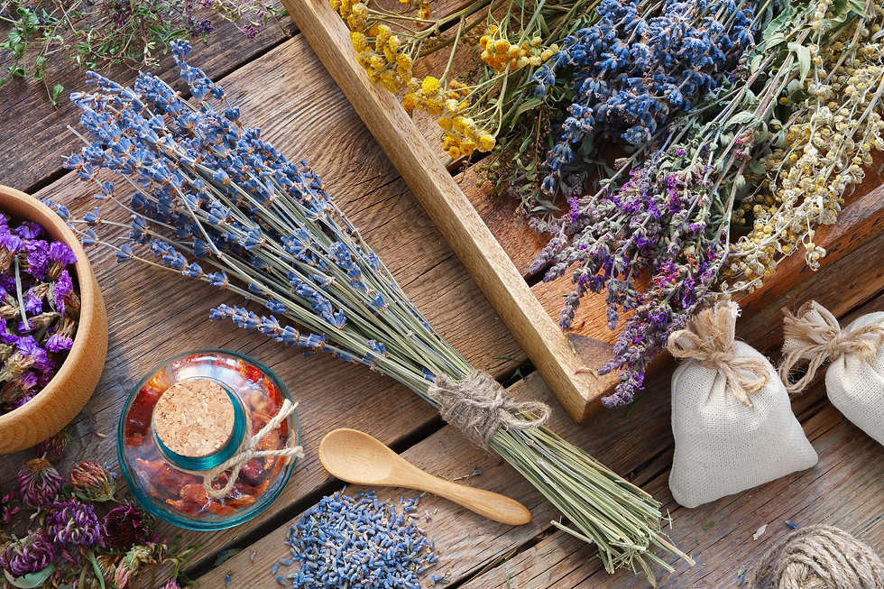 Bunch Of Lavender And Medicinal Herbs, Mortar Of Dry Healthy Flowers On Wooden Table. Herbal Medicin