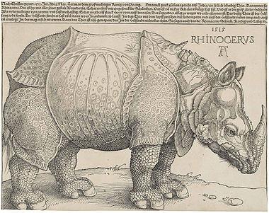 (c) Albrecht Dürer