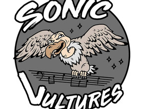 An Interview With The Sonic Vultures