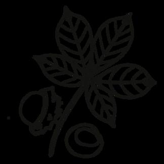 Buckeye Leaf.png