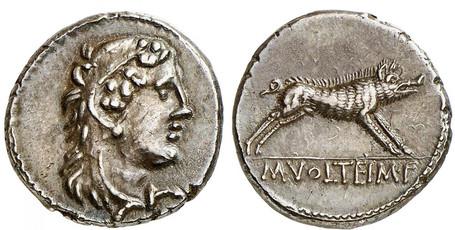 M. Volteius Denarius - Hercules and the Erymanthian Boar (Crawf. 385/2), 78 BC