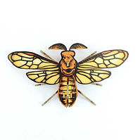 15646-insecte-noctambulus..jpg
