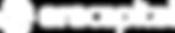 ERA CAP logo white.png