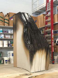 Burned Book - Candide