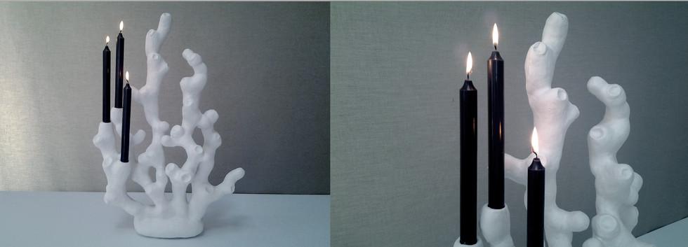 LAMP2_1.jpg
