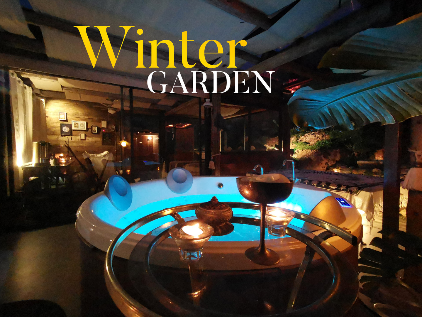 winter garden cover.jpg