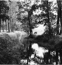 Noud Aartsen, Best of Oirschot, 1991. Br
