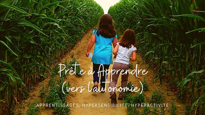 Apprentissages, hypersensibilité, hyperactivité (1).png