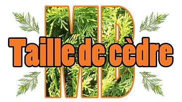 Taille de haies de Cedre Longueuil Laval Montreal Rosemère