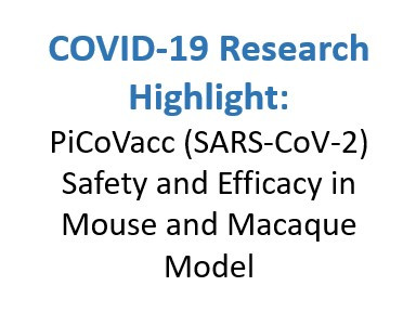 COVID-19 Research Highlight: PiCoVacc (SARS-CoV-2) Safety and Efficacy in Mouse and Macaque Model
