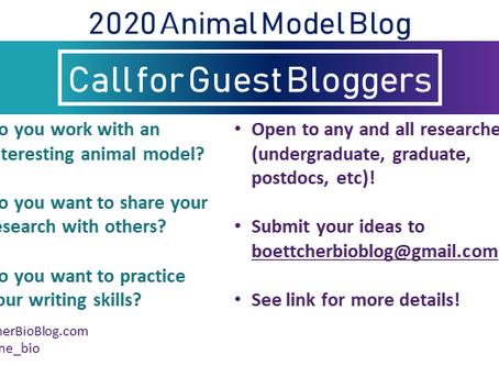Call for Bloggers: 2020 Animal Model Blog