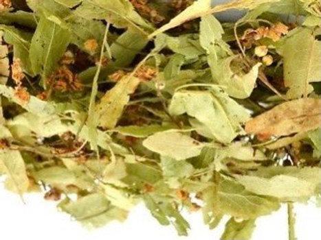 Organic Linden (TILO)