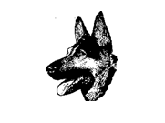 LogoGialloConFreccia1copy.png