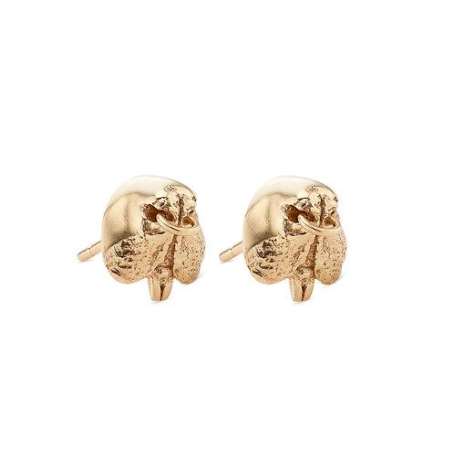 18 Carat Gold Snout Stud Earrings