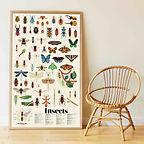 poppik insectes owen davey sticker poste