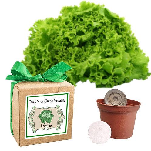 Grow Your Own Garden Kit