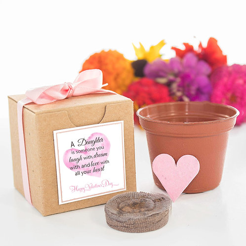 Valentine's Day Flower Seed Grow Kit Gift for Daughter
