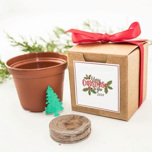 Merry Christmas 2020 Tree Grow Kit