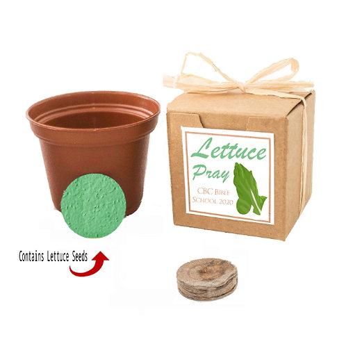 Custom Lettuce Seed Grow Kit