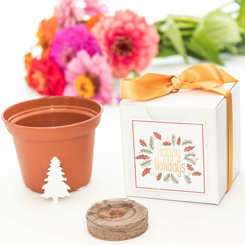 Happy Holidays Tree Grow Kit with White Gift Box