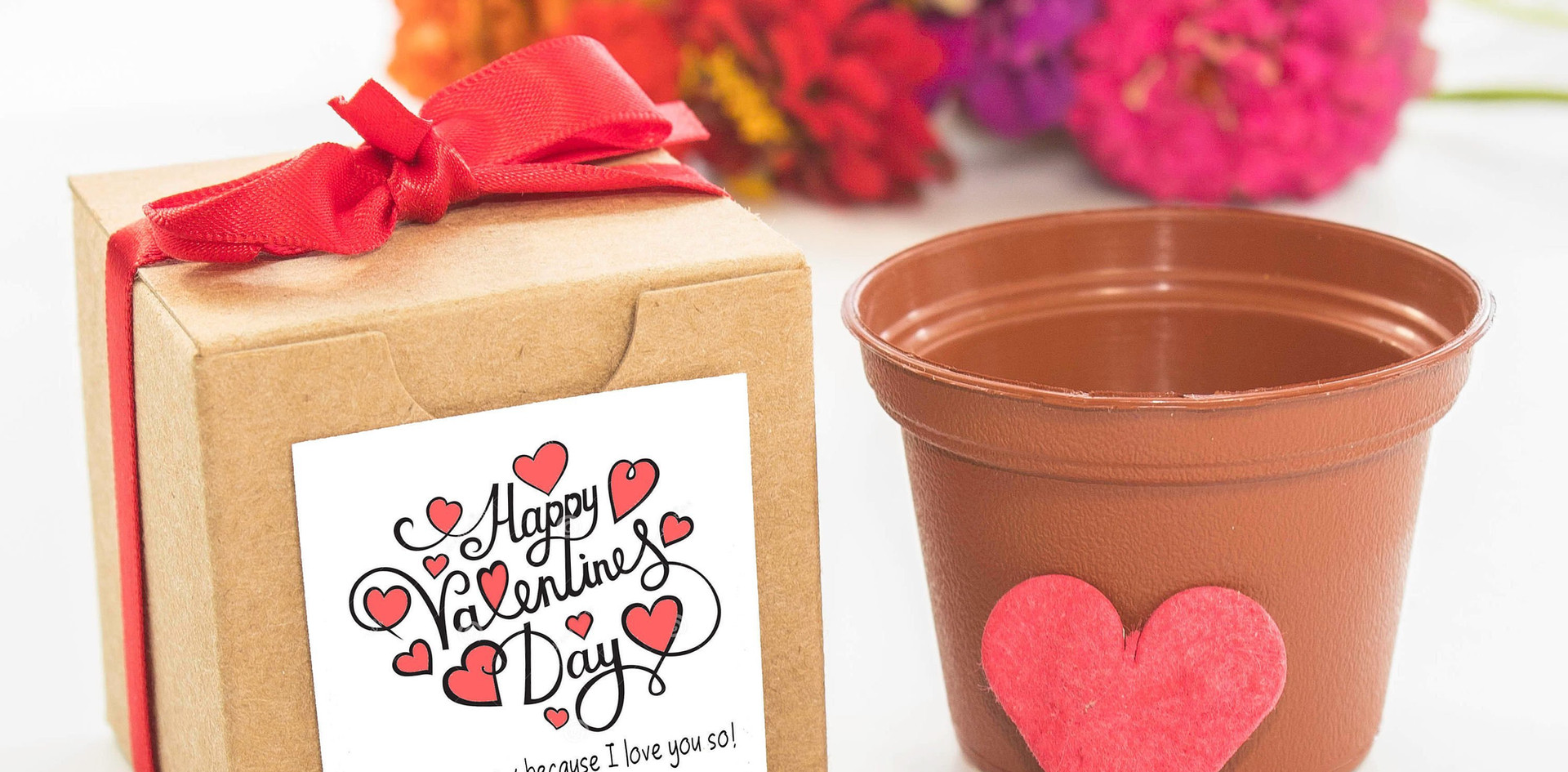 Valentine'sDay.jpg