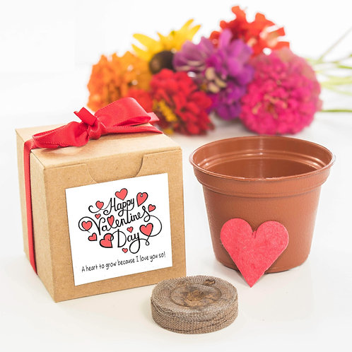 Valentine's Day Flower Garden Grow Kit