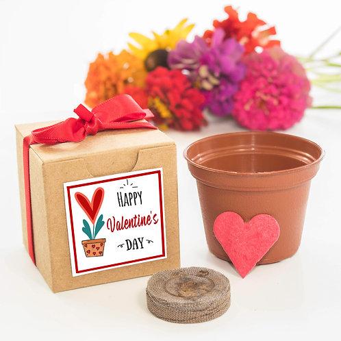 Valentine's Day Flower Garden Grow Kit