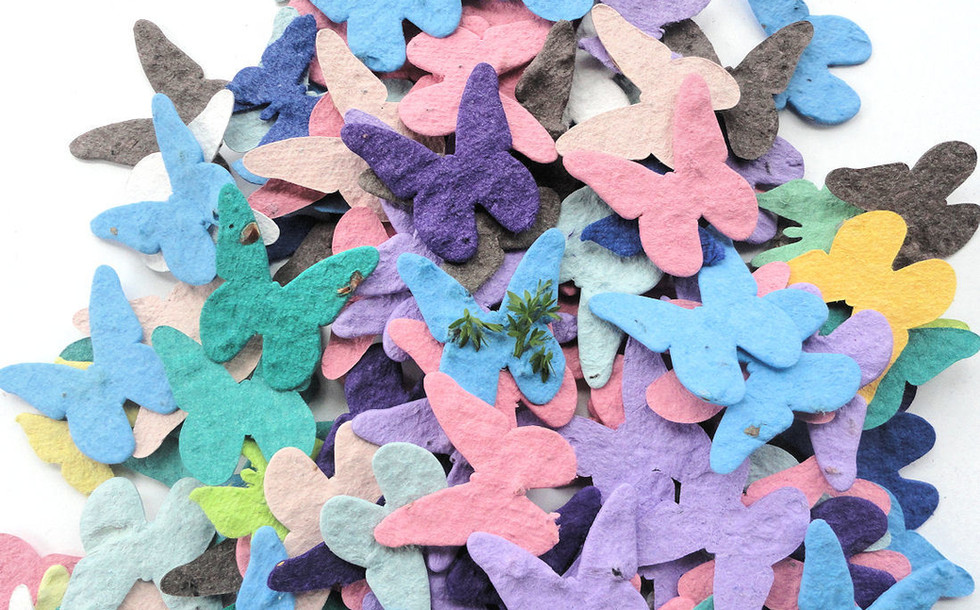 Butterfly Plantables.jpg