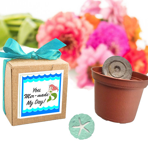 You Mer-Made My Day Garden Grow Kit