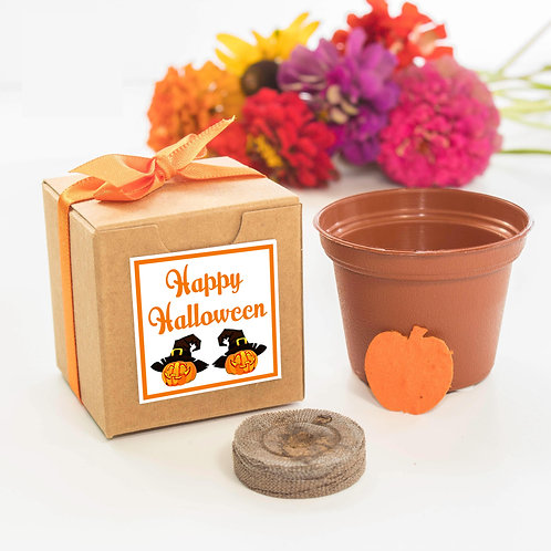 Happy Halloween Wildflower Garden Grow Kit
