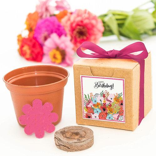 Happy Birthday Flower Grow Kit