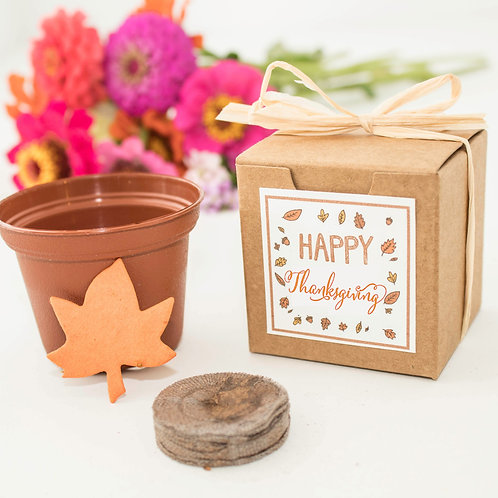 Happy Thanksgiving Mini Flower Grow Kit