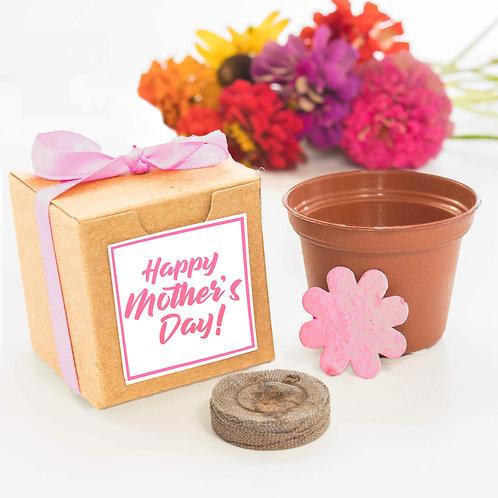 Happy Mother's Day Flower Garden Grow Kit