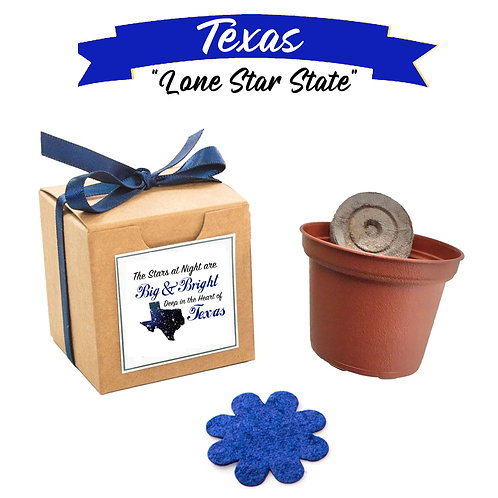 "Texas ""Lone Star State"" State Themed Garden Kit with American Wildflowers"