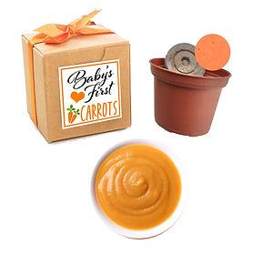 Baby Carrot Food copy.jpg