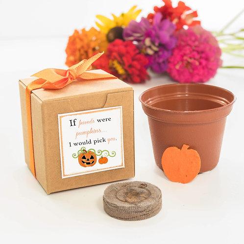 Happy Halloween Mini Flower Grow Kit