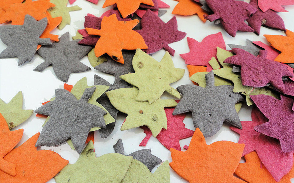 plantable_maple_leaf_seed_paper_party_co