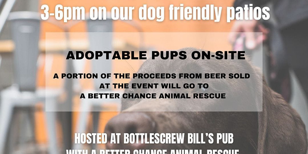 Pups and Pints!