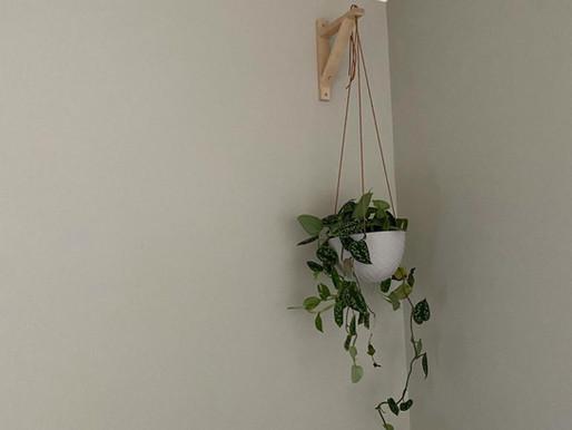 Vi anbefaler: Kreativt planteoppheng