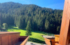 balconi_edited.jpg