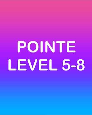 POINTE 5-8.png