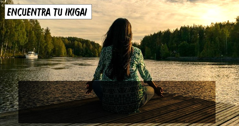 Ikigai - encuentra tu proposito