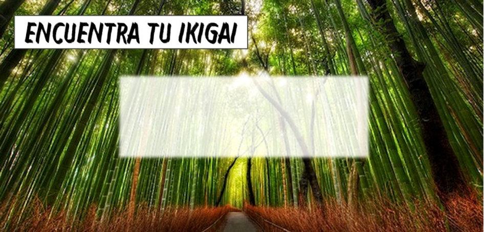 Encuentra tu Ikigai el secreto del éxito es empexar antes de estar listo