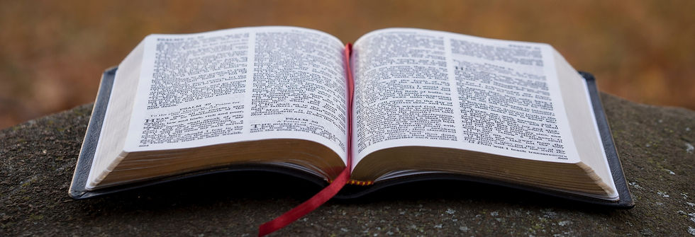 bible%20page%20on%20gray%20concrete%20surface_edited.jpg