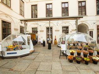 """MOËT & CHANDON und BARBARO GASTRONOMIE präsentieren den """"Mercato Barbaro"""" –ein Pop-up Markt!"""