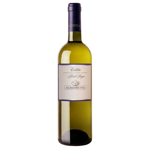 Pinot grigio Collio D.O.C - Mario Schiopetto