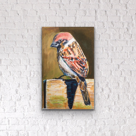 Sparrow, Pencil Pen & Ink, Lisa Banks