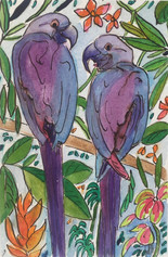 Parrots.jpeg
