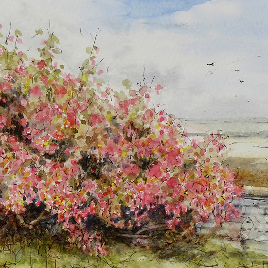 Flowering Currant by the Shore, Watercolour study, Joseph Hewes