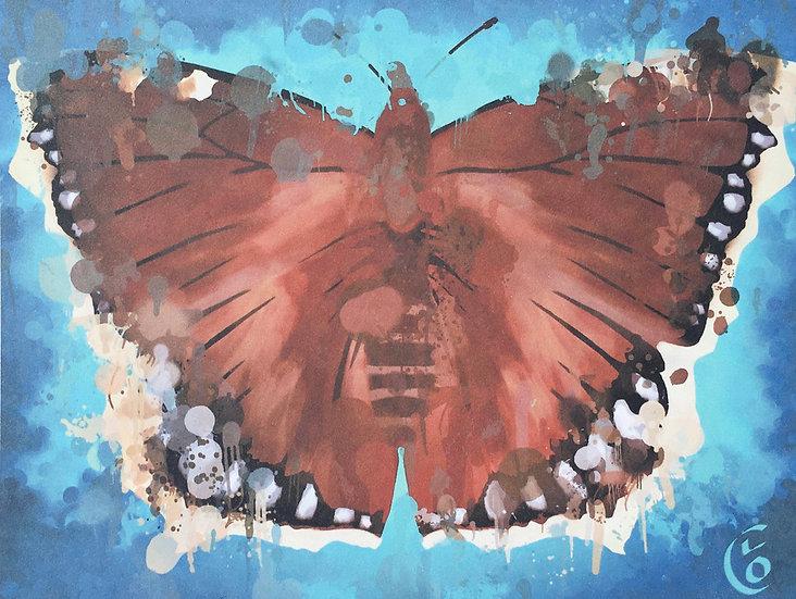 Butterfly Camberwell Beauty